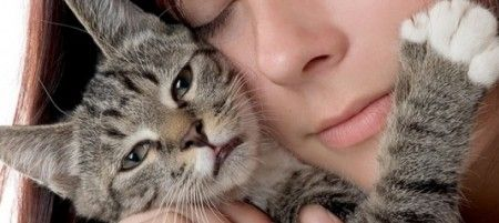 gatti-donne