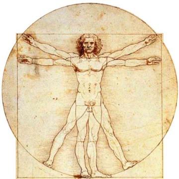 http://lauracarpi.files.wordpress.com/2012/08/uomo-leonardo.jpg