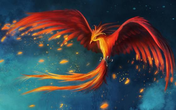 Phoenix-Flight