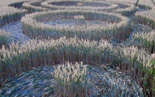 crop1053-Jul.-22-18.29-793x500