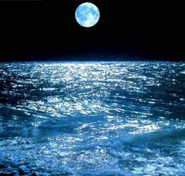 alta+marea