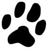 prodotto_impronta_gatto