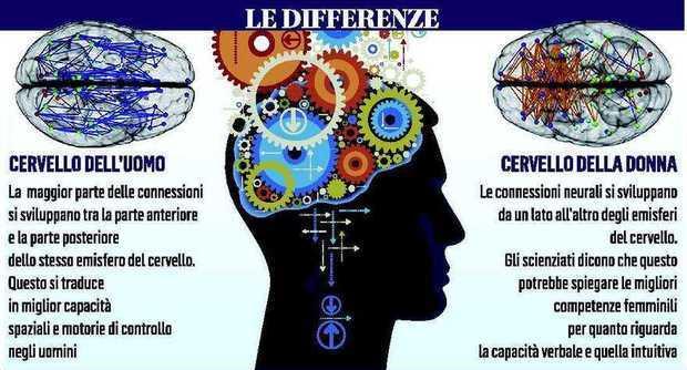 20131204_cervello