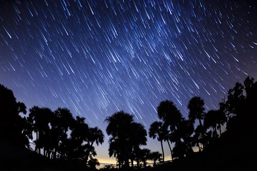 Shiloh+march+falling+stars