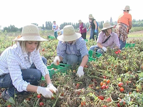 04-cia-boldrini-agricoltura