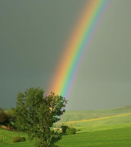 arcobaleno_kicco