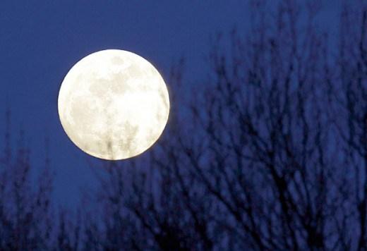 luna_f-e1335967959522