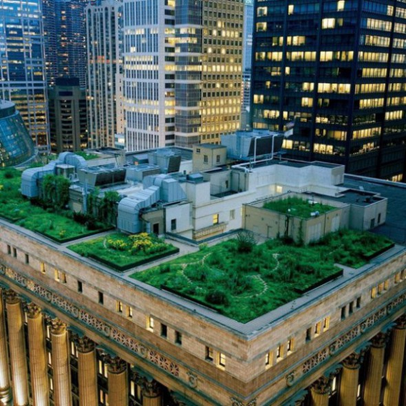 chicago-city-hall-green-roof_00096123