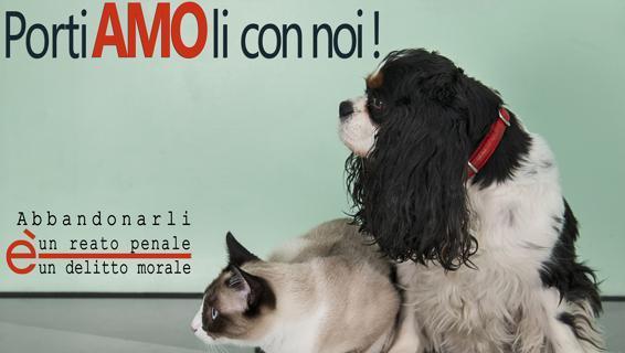01 Campagna contro abbandono animali I (web)-keBD-U103012966611274Z-568x320@LaStampa.it