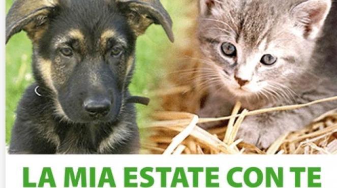 2197782-locandina_campagna_contro_abbandono_animali