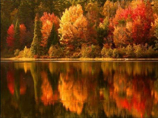 * Ottobre, nel segno dellerelazioni e della percezione