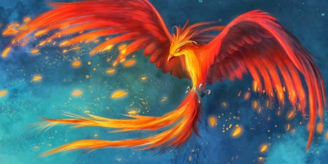 uccello-phoenix-660x330