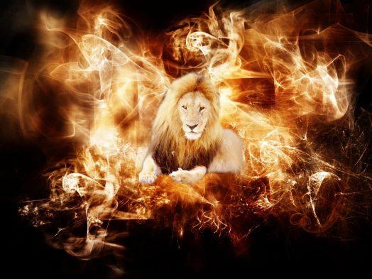 leon_entre_el_fuego