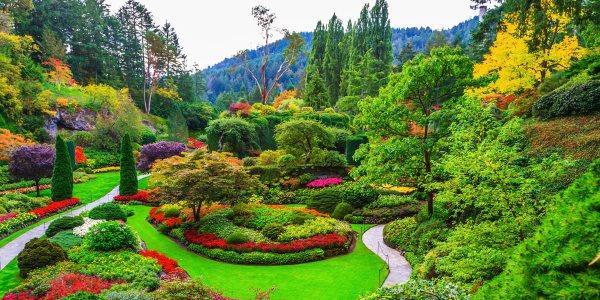 Venere laurin42 for Giardini immagini